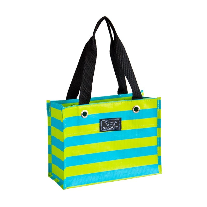 Bungalow Scout Tiny Package Jiminy Crockett-jiminy cricket, bungalow scout tiny package, small tote, gift tote, green and yellow, stripe, peacock strip, awning stripe,